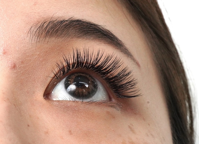 Eyelash Extensions Competition Example Look Up After